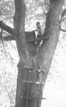 Bob in Maple Tree House.